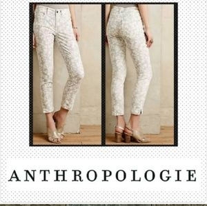 Anthropologie